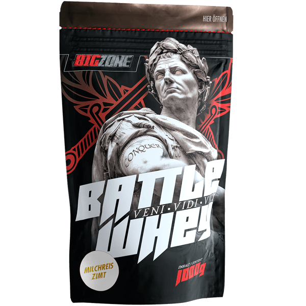Big Zone Battle Whey - 1000g Milchreis Zimt